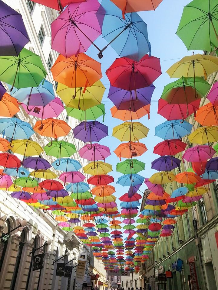 Timisoara sub umbrele